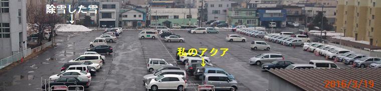 3/19今日の駐車場.jpg