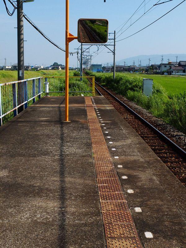 DSCF0124.jpg-1.jpg