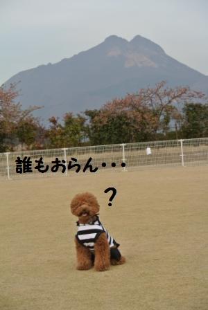 到着後のラン (8).JPG