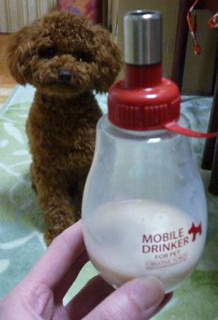リンク 牛乳ボトルおすわり.JPG