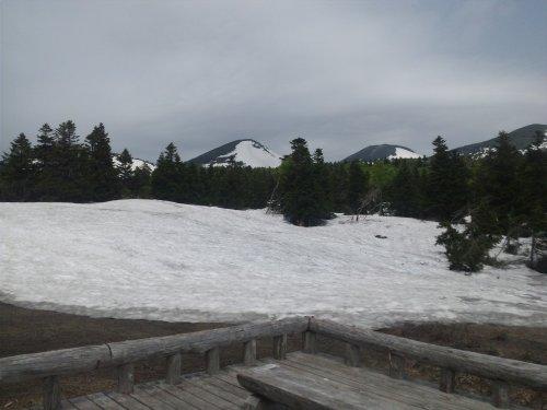 睡蓮沼に雪が(^^;20130606