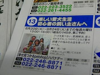P1390011.jpg
