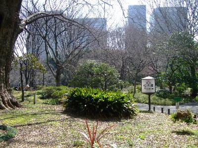 2012お花教室3月5.JPG