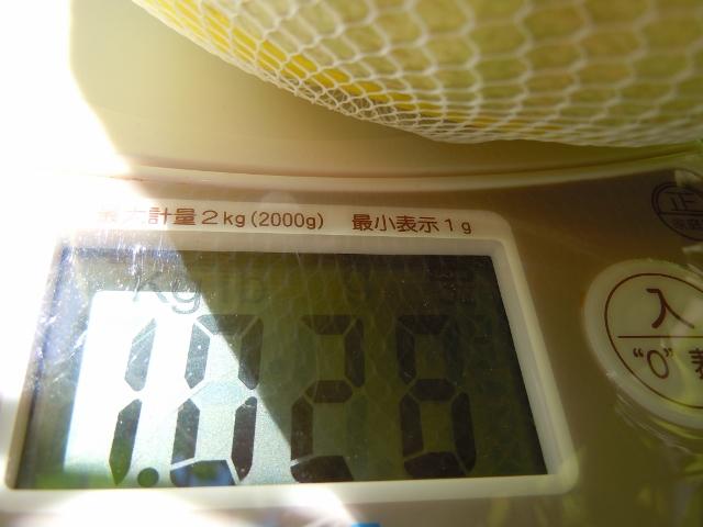 DSCN2282 (640x480).jpg