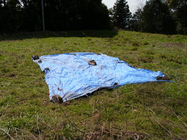 青いシートのある風景20120326
