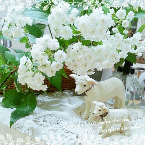 rblog-20150417004625-00.jpg