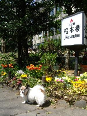 2012お花教室3月2.JPG