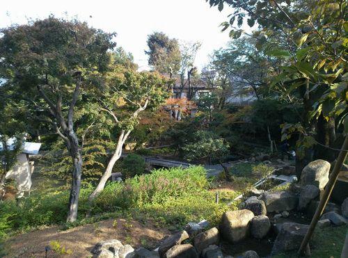 向山庭園500.jpg