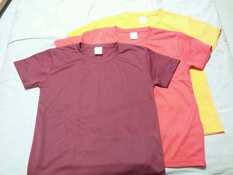 20121115用Tシャツ.JPG