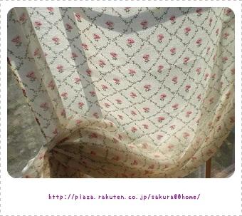 CIMG1533 (640x480).jpg