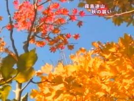 2013-11-momi06-kiri