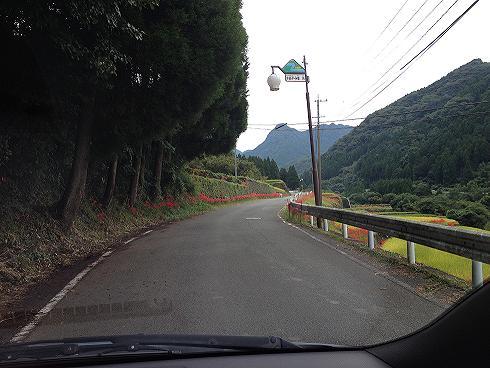 道路.jpg