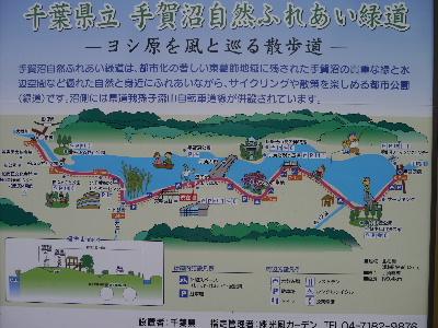 2012手賀沼1.JPG