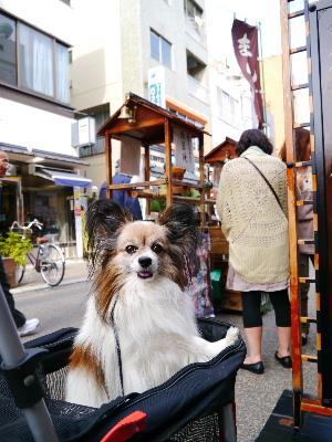 2012浅草4月19.JPG