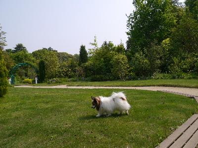 清水公園4.JPG