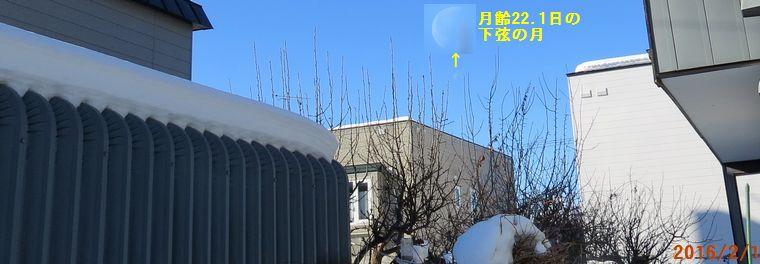 2/1今朝の空.jpg