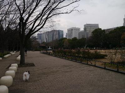 2012銀座1.JPG