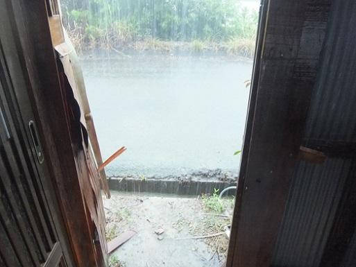 大雨が2.jpg