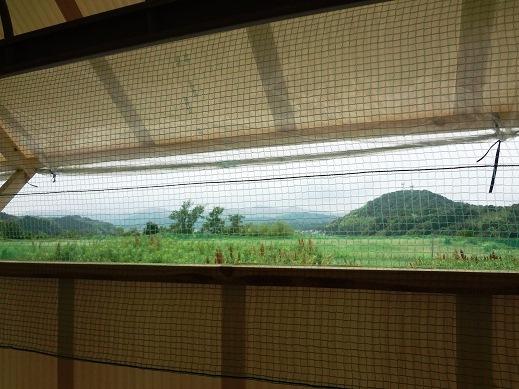 窓から見る景色.jpg