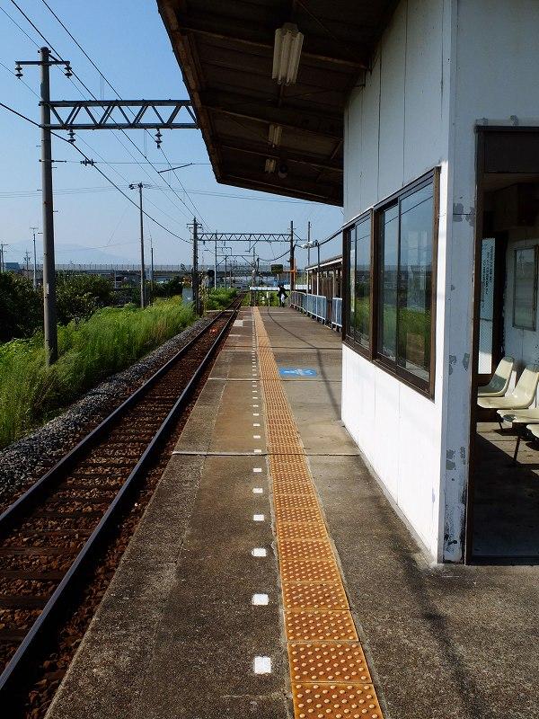 DSCF0125.jpg-1.jpg