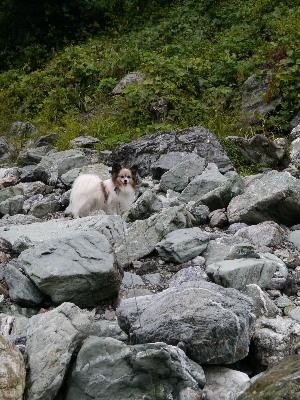 2012三波石峡7.JPG