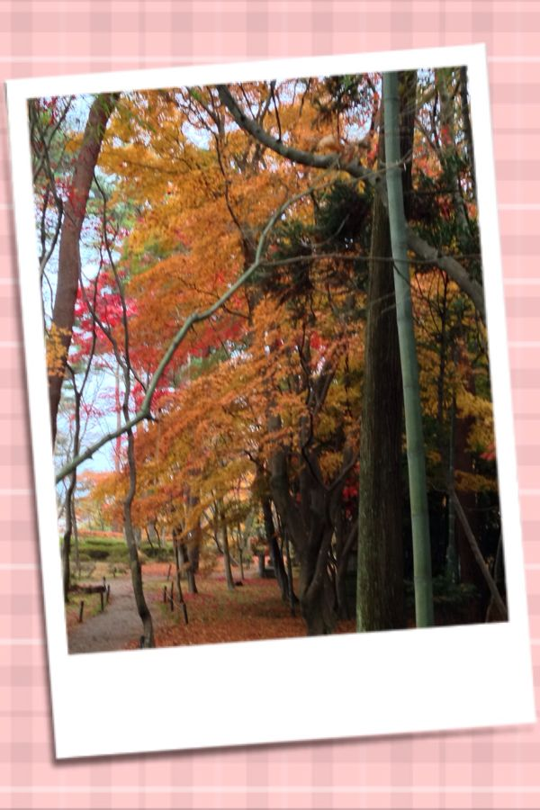 rblog-20141126214739-00.jpg