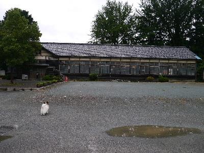 2012三波石峡2.JPG