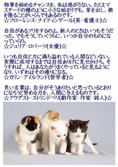 001今日の名言2015.8.16.JPG
