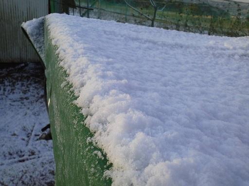 雪のけーとら.jpg