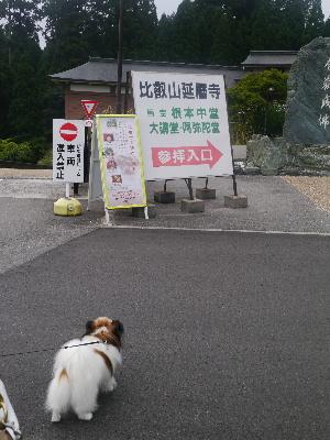 2012京都夏2−12.JPG