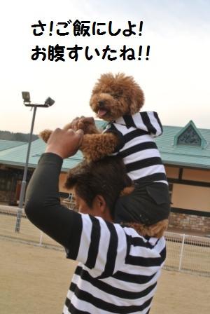 到着後のラン (35).JPG