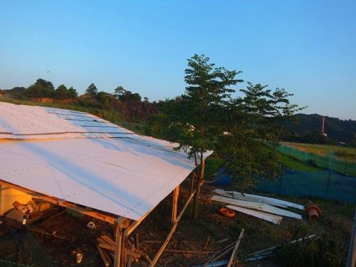 鶏舎の屋根.jpg