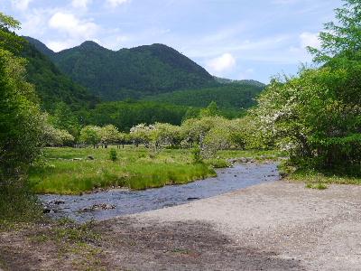 2012日光夏2-6.JPG