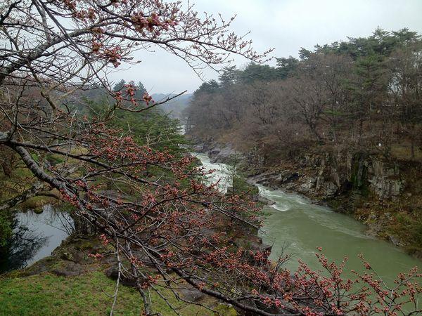 20120423厳美渓