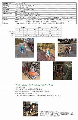 2017.3.10-2.jpg