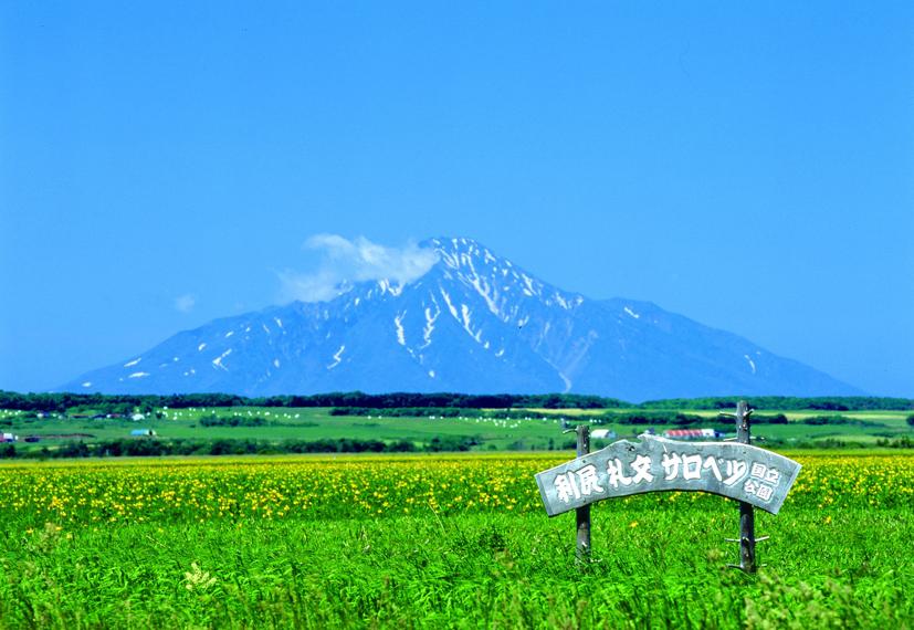 サロベツ原野 水平線まで続く日本一の高層湿原「サロベツ原野」は、ため息がでるほど広大... 天塩