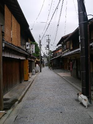 2012京都夏3−5.JPG