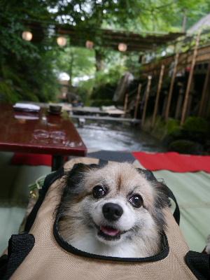 2012京都夏3−17.JPG