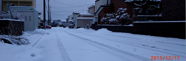12/17今朝の雪.jpg