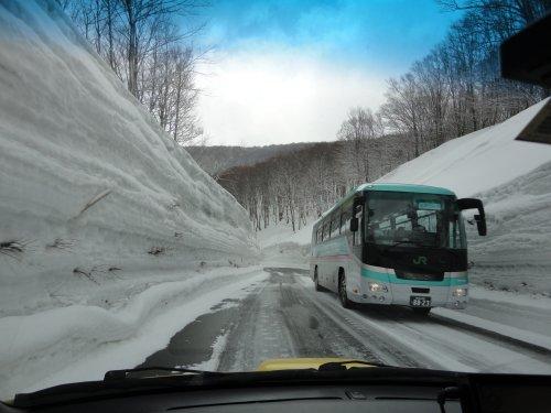 八甲田の回廊もどきとはやぶさバス