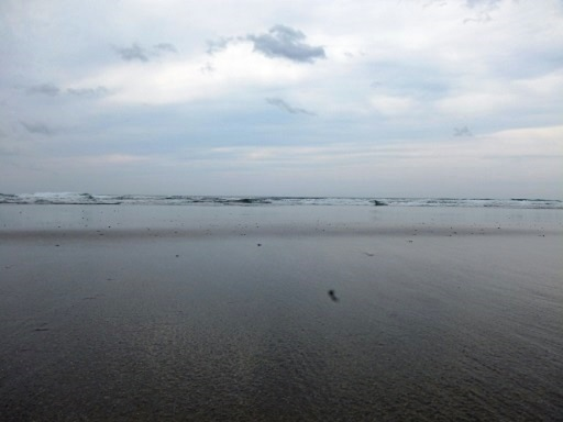 ある時は海へ.jpg