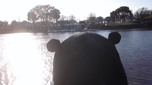 くまモン江津湖3