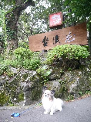 2012伊豆旅行2-1.JPG