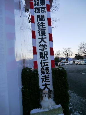 2013箱根10.JPG