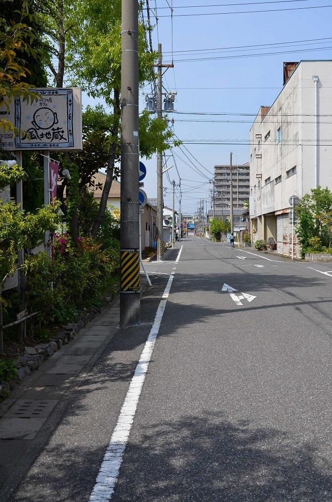 DSC_4954.jpg-1.jpg