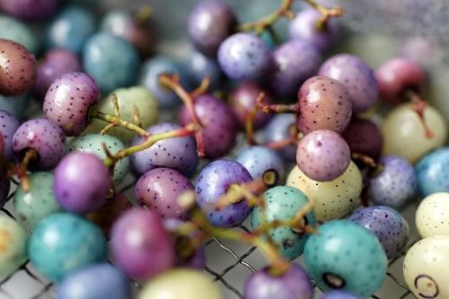 ウマブドウの実