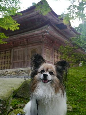 2012京都夏2−19.JPG