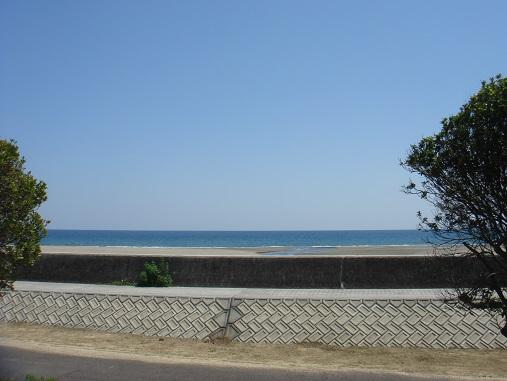 海辺の・・・.jpg