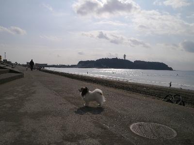 2012湘南1.JPG