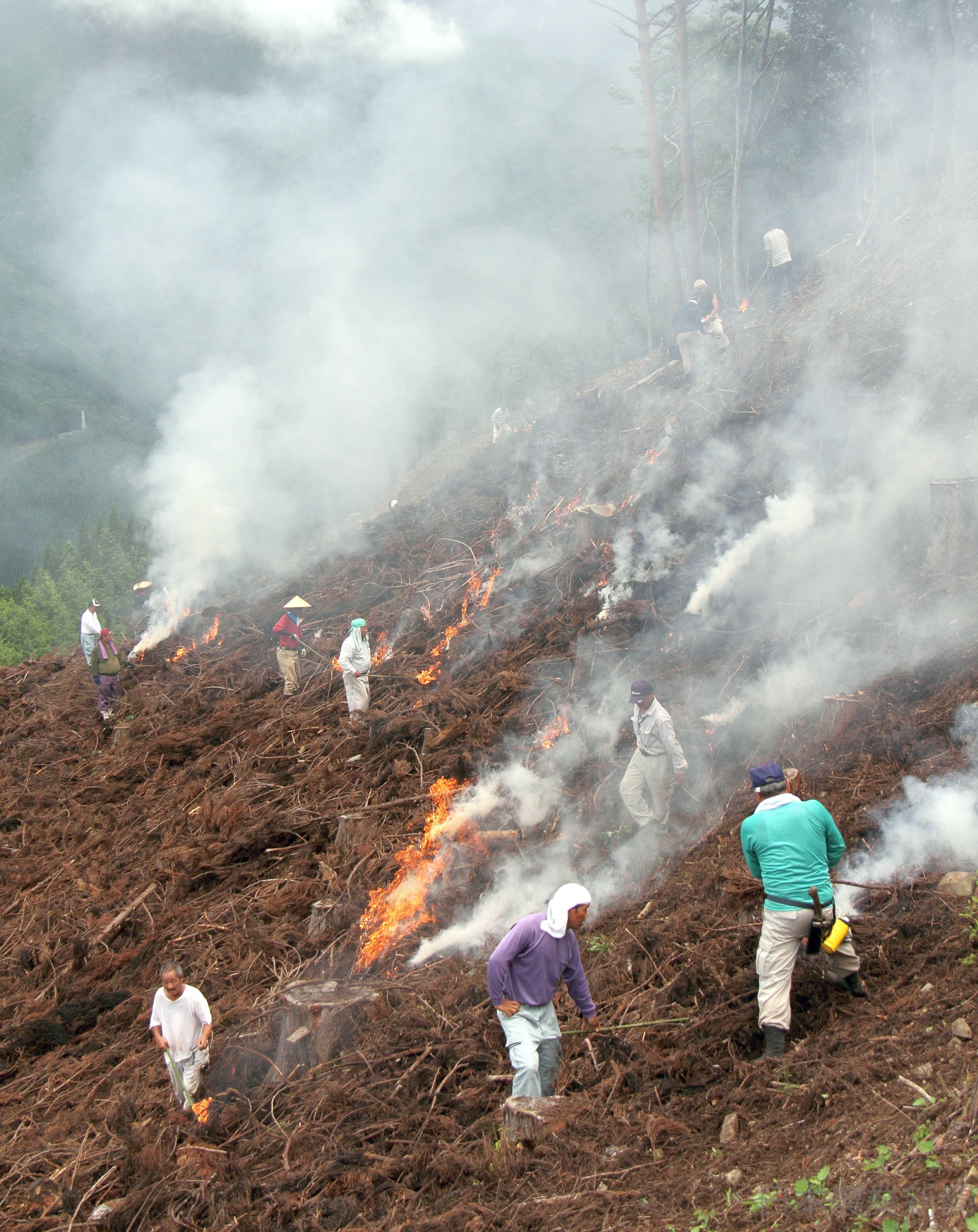 畑 焼き もみがらを焼いて畑にまくとなぜよいのですか。また、もみがらの利用方法についてもおしえてください。:農林水産省